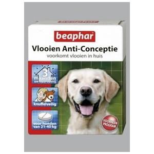 Beaphar Vlooien Anti Conceptie 21 40 kg per verpakking