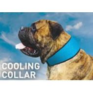 Bodycooler Pet Collar