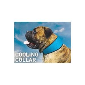 Bodycooler Pet Collar voor de hond Blauw
