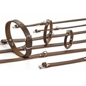 Leren Halsbanden 32 cm voor de hond Bruin