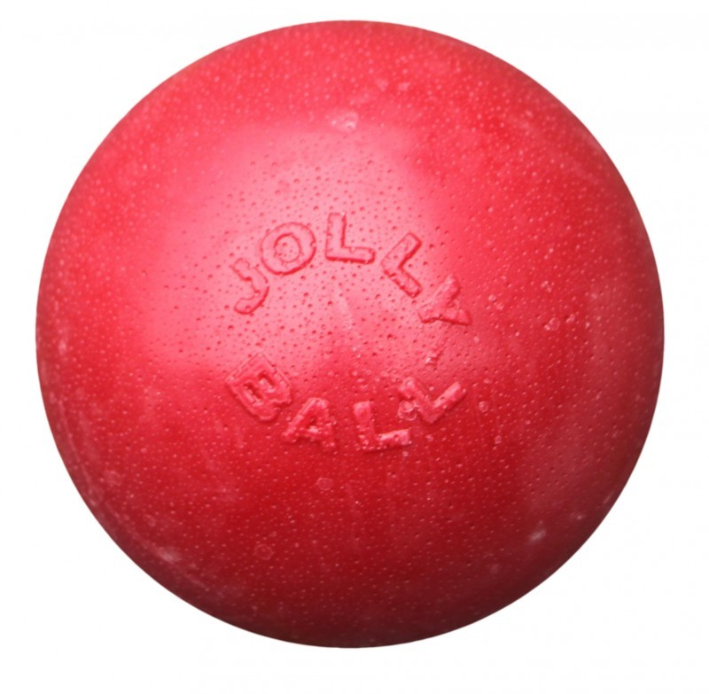 Jolly Ball Bounce-n-Play large (20 cm) voor honden