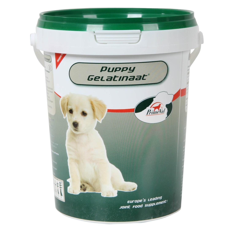 Primeval Puppy Gelatinaat voor de hond