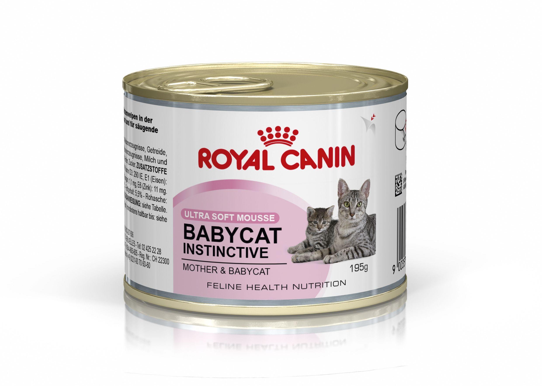 Royal Canin Mother & Babycat Mousse kattenvoer
