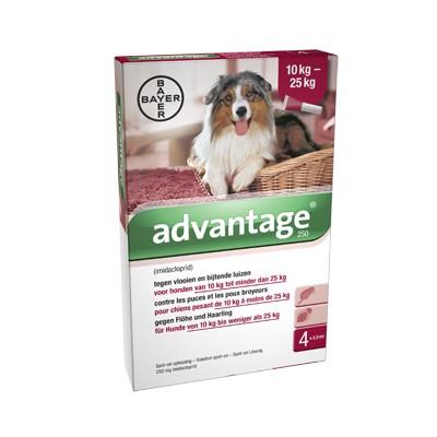 Advantage Nr. 250 vlooienmiddel (10 tot 25kg) hond