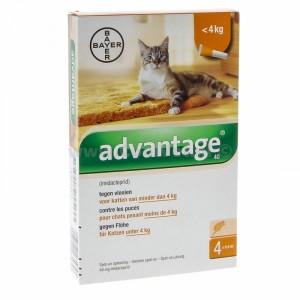 Advantage Nr. 40, Vlooienmiddel (tot 4kg) kat