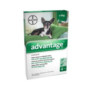 Advantage Nr. 40, vlooienmiddel voor honden S