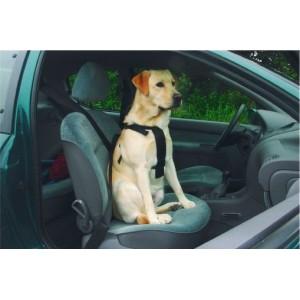Beeztees Wandel- en Autogordel voor de hond