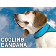 Bodycooler Pet Bandana S voor de hond
