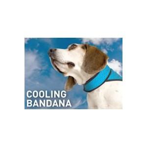 Bodycooler Pet Bandana S voor de hond Effen Blauw