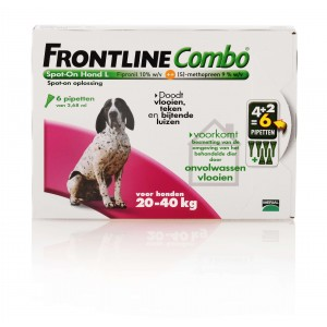 Frontline large hond combo spot on 3 pack