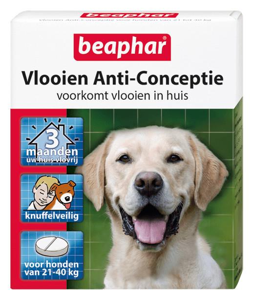 Beaphar Vlooien Anti-Conceptie (21 tot 40 kg) hond