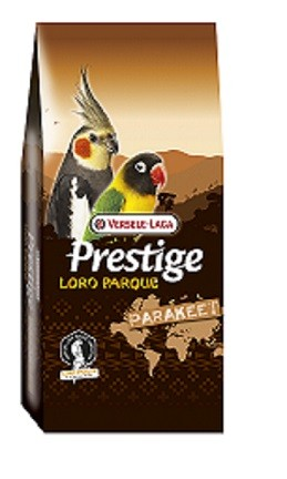 Prestige Premium African Parakeet