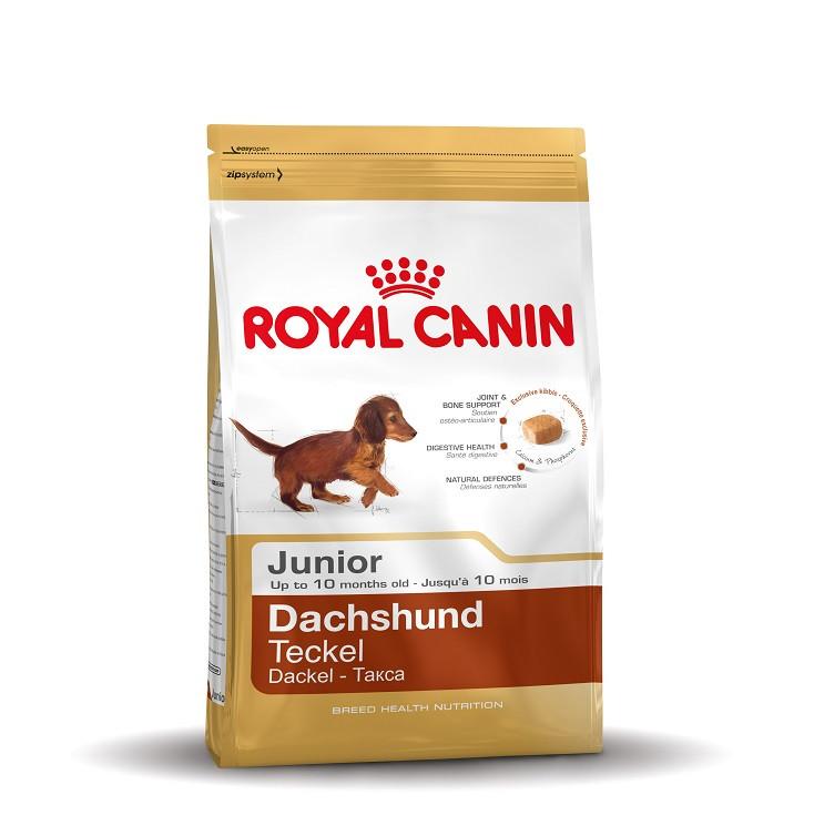 Royal Canin Junior Teckel/Dachshund hondenvoer