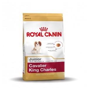 Royal Canin Cavalier King Charles Junior hondenvoer 3 x 1,5 kg