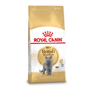 Kattenvoer Royal Canin Royal Canin Royal Canin Adult British Shorthair kattenvoer 2 x 10 kg