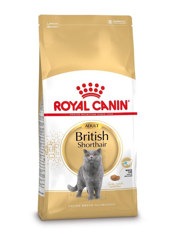 Royal Canin Adult British Shorthair kattenvoer