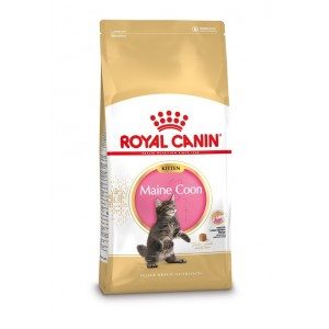 Royal Canin Kitten Maine Coon kattenvoer 2 x 10 kg Royal Canin Kattenvoer Royal Canin