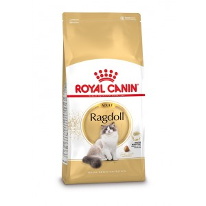 Royal Canin Adult Ragdoll kattenvoer 10 kg Royal Canin Kattenvoer Royal Canin