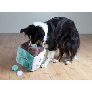 Pluchen Kubus met 4 ballen voor honden
