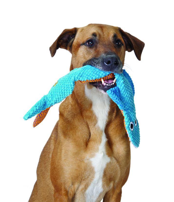 Petstages Stuffing Free Floppy Shark voor honden OP is OP