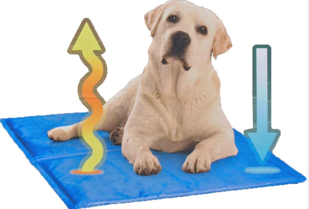 Doggy Cool Koelmat voor honden