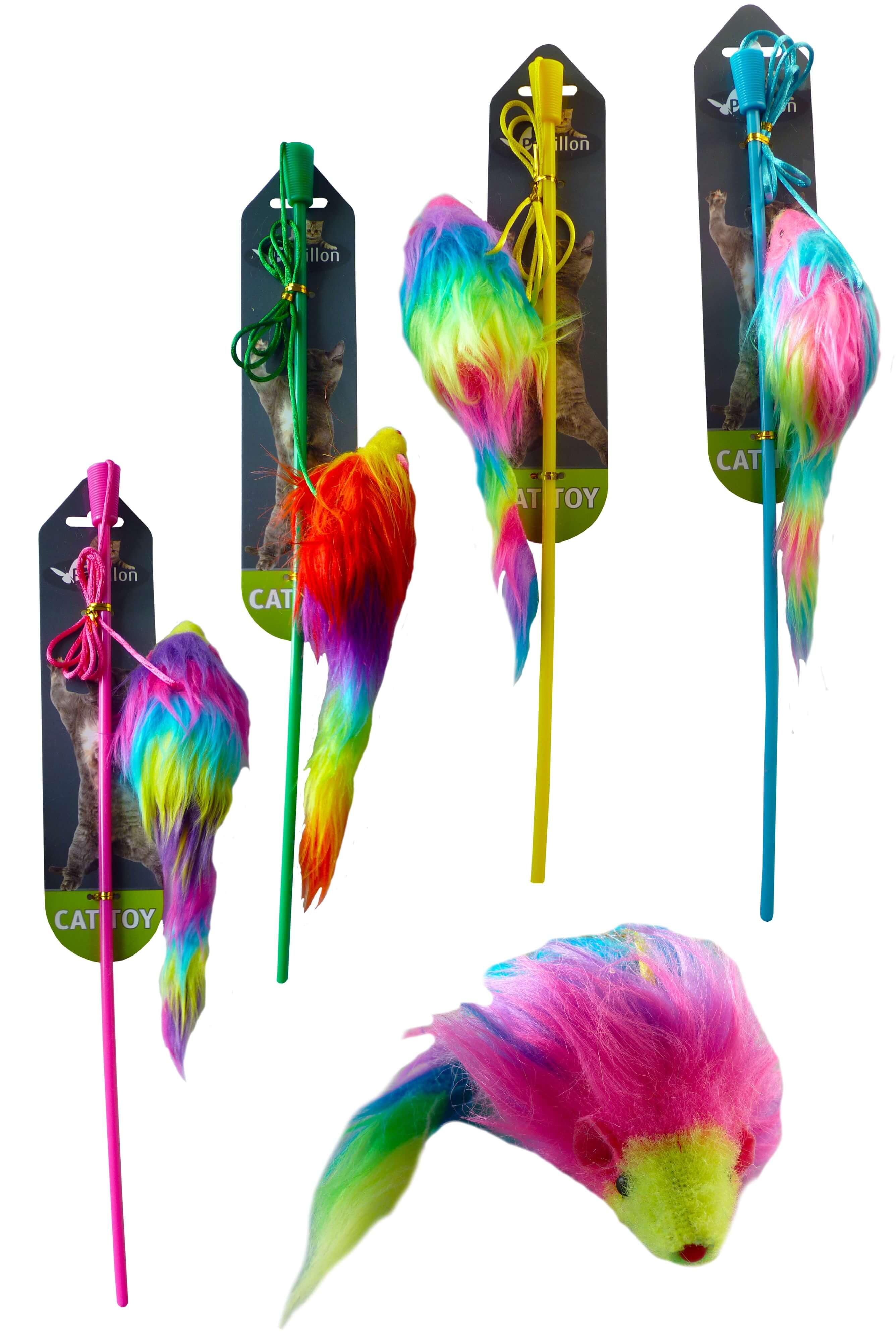Hengel met regenboog muis voor de kat
