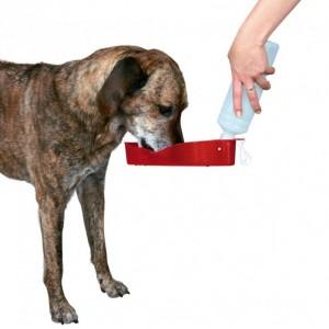 Drinkfles voor onderweg voor de hond