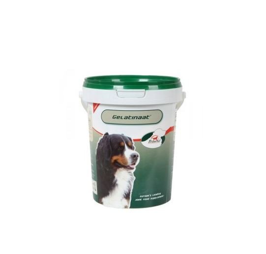 Primeval Gelatinaat voor de hond