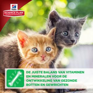 Hill's Kitten Healthy Development Tonijn kattenvoer