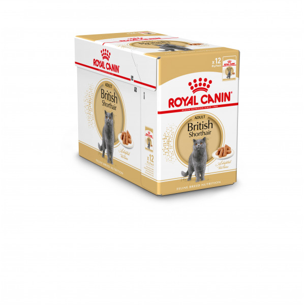 royal canin british shorthair adult pouch kattenvoer goedkoop online. Black Bedroom Furniture Sets. Home Design Ideas