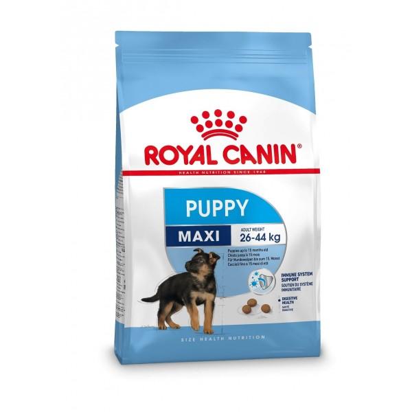 royal canin maxi junior hondenvoer online kopen. Black Bedroom Furniture Sets. Home Design Ideas