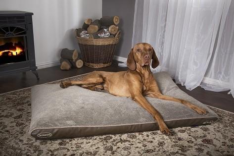 Scruffs Château Orthopedisch Hondenkussen Latte