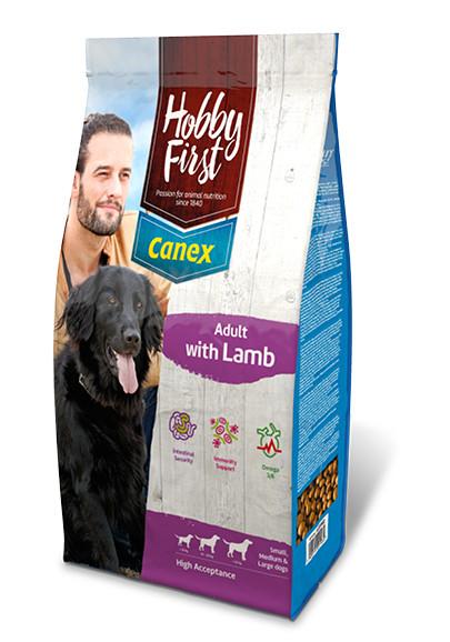HobbyFirst Canex Adult met Lam
