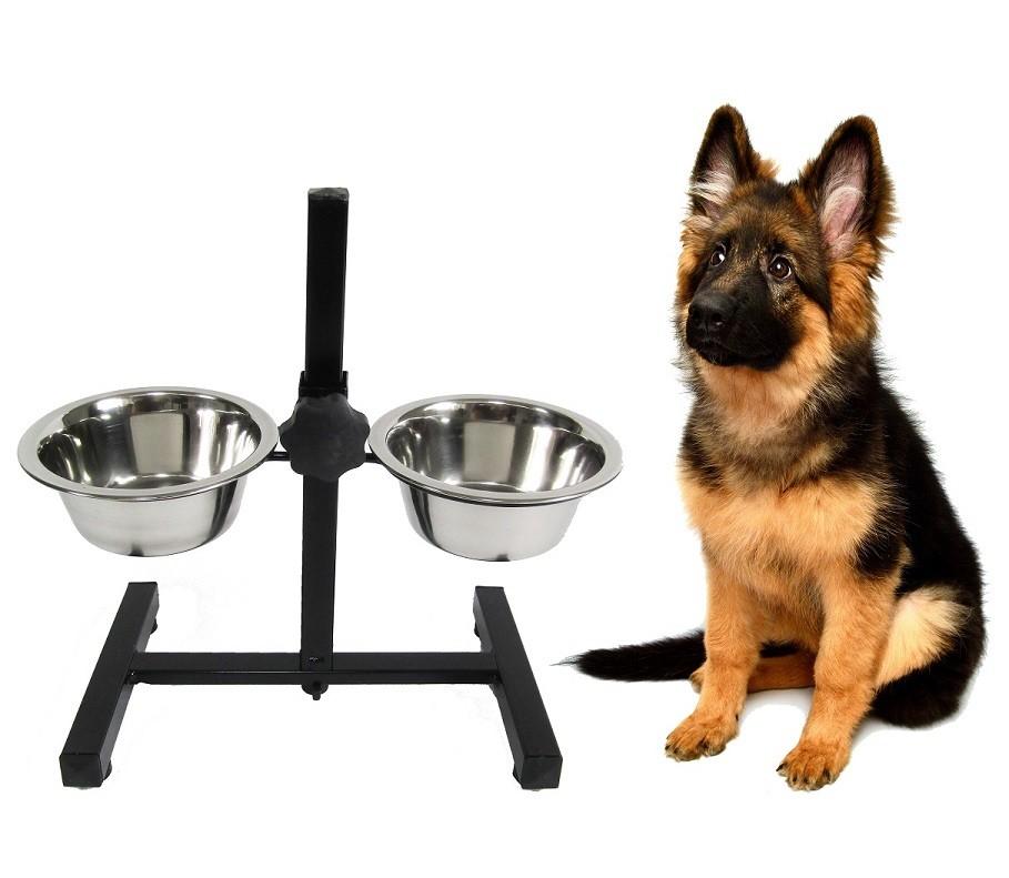 Voederstandaard Inclusief Bakken voor de hond