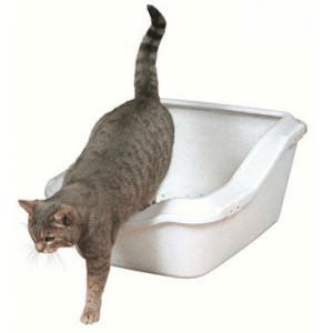 Kattenbak Cleany Cat