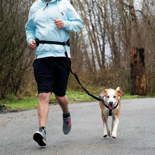 Jogging heupriem met lijn