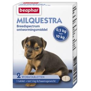 Beaphar Milquestra ontwormingsmiddel kleine hond en puppy