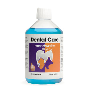 Sire Dental Care