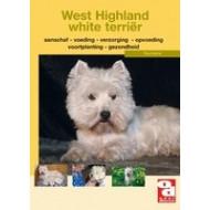Informatieboekje West highland white terriër