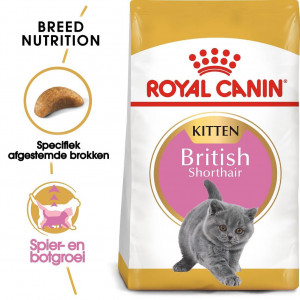 Royal Canin Kitten British Shorthair kattenvoer