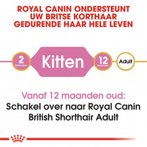 Royal Canin Kitten British Shorthair kattenvoer