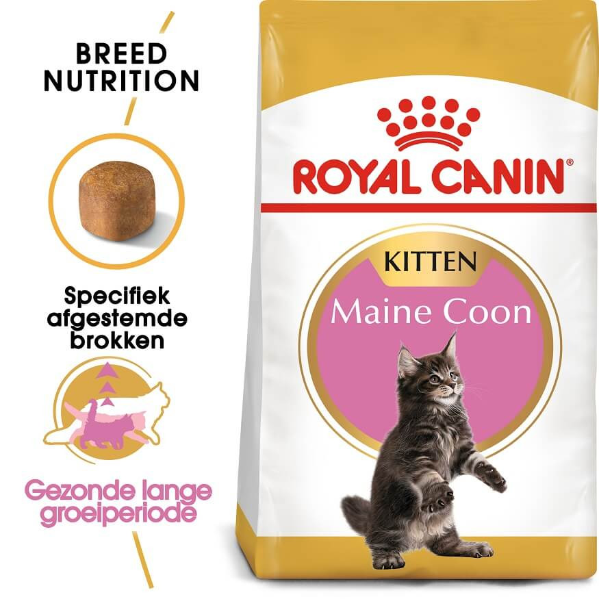 Royal Canin Kitten Maine Coon kattenvoer