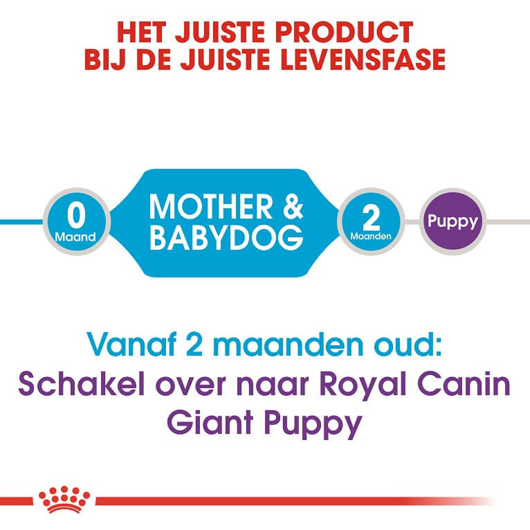 Royal Canin Giant Starter Mother and Babydog hondenvoer