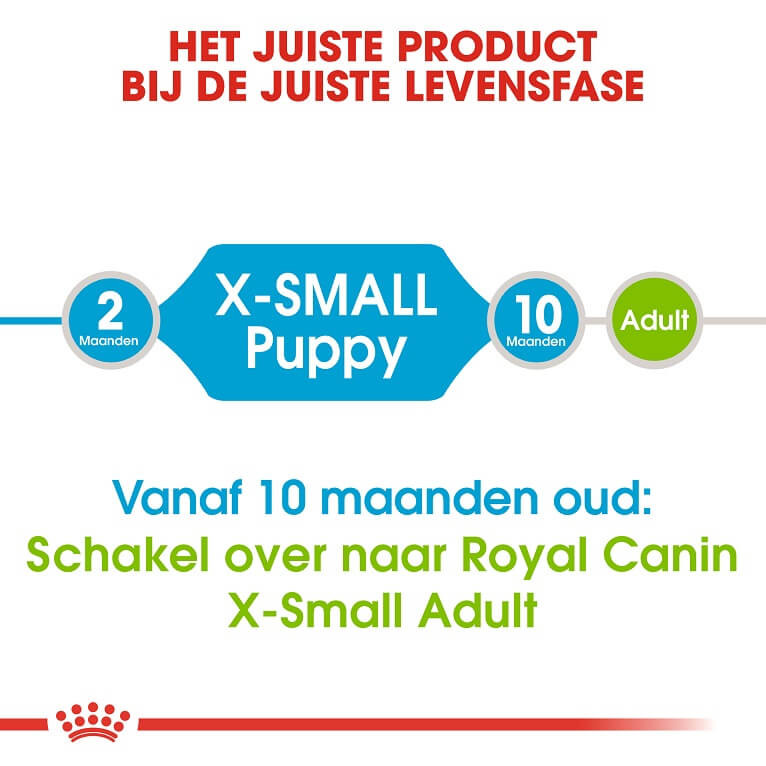 Royal Canin Mini X-Small Junior voor de hond