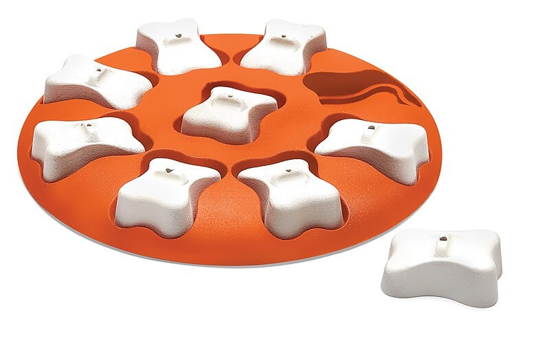 Nina Ottenson Dog Smart Orange