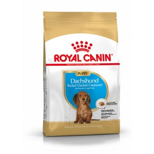 Royal Canin Junior Teckel/Dachshund hondenvoer