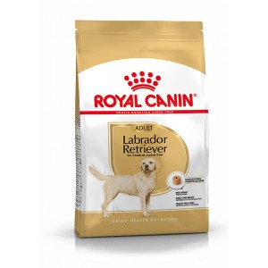 Royal Canin Adult Labrador Retriever hondenvoer 3 kg