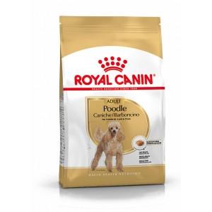 Royal Canin Adult Poodle hondenvoer