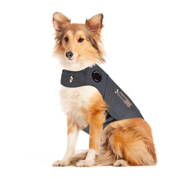 Thundershirt voor honden