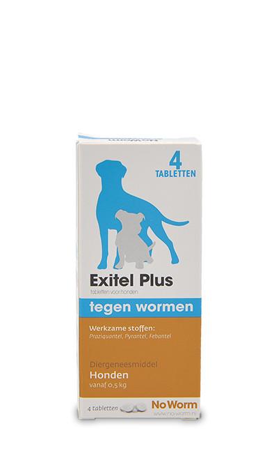 Exil No Worm Hond M. voor de hond
